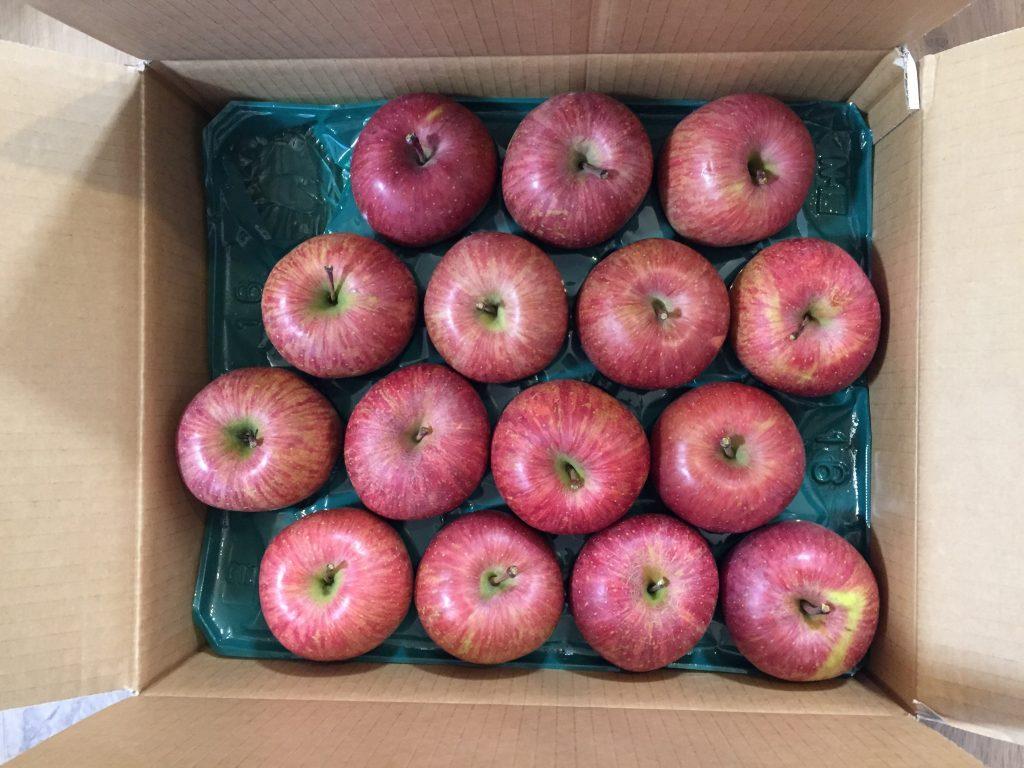 天童市ふるさと納税2016年リンゴ